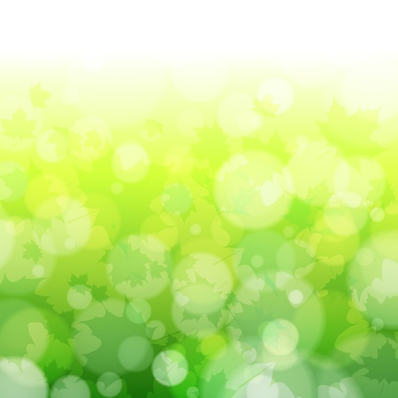 Beautiful spring forest bokeh background with maple leaves. Vector eps10 illustration