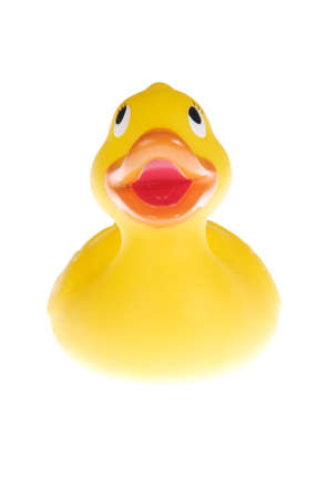 Yellow plastic duck. Picture was taken in a studio photo