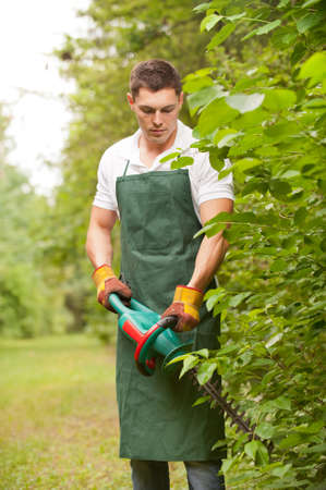 hedge plant: Young and smiling gardener with hedge cutter Stock Photo
