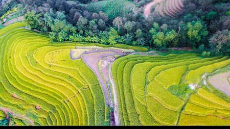 Hoang Su Phi rice terrace in Ha Giang province northern Vietnam