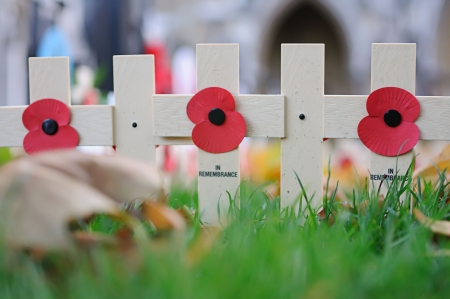 Poppy appeal on a cross on the grass near the Westminster Abbey