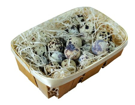 Clutch of quail eggs in a basket filled with shavings isolated on white