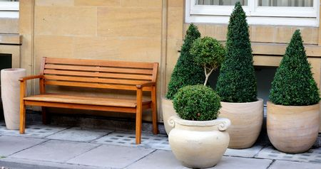 Wooden bench and decoration trees on the street