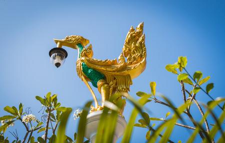 stucco: Street lamp outdoors swan stucco.