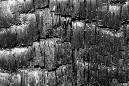 burnt: Burnt wood texture background Stock Photo