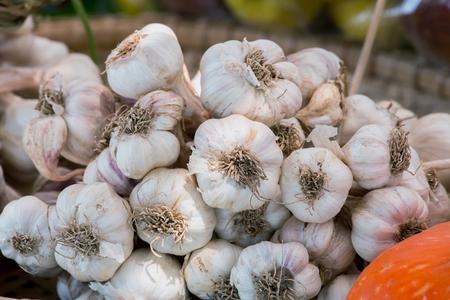 heap: Heap of dried garlic
