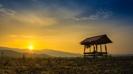 farmer hut on agricultural garden in countryside Thailand and light shines sunset Stock Photo