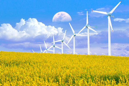 Wind Turbine for alternative energy in Yellow flowers field of Crotalaria with power poles. Eco power concept Stock Photo