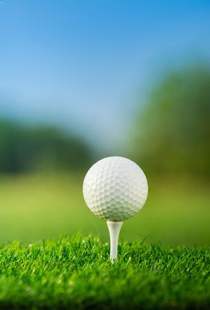 Fermer la balle de golf sur des piquets de départ prêts à jouer dans le fond vert