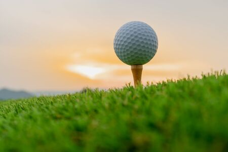 sport outdoor, golf ball on tee pegs ready to play in the green grass and light shines sunset Stockfoto