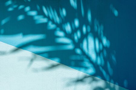 shadow palm leaf on blue concrete background Stock fotó