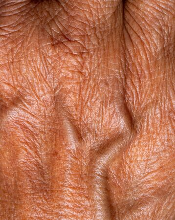 macro close up of Asia elderly woman hand skin with blood vessel Reklamní fotografie