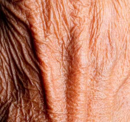 macro close up of Asia old woman hand skin with blood vessel