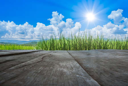old brown wooden floor beside green rice field with blue sky and sun shines in the day 스톡 콘텐츠 - 152434761