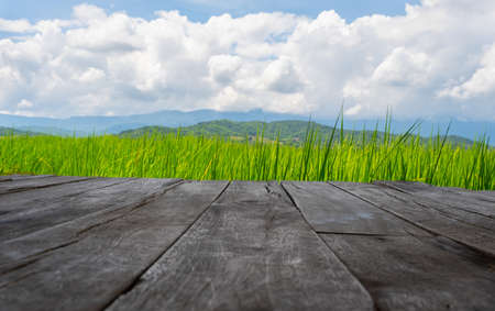 old brown wooden floor beside green rice field with cloud sky and copy space use for background concept natural