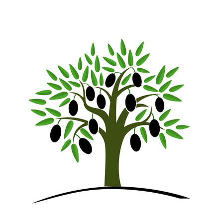 Olive tree with green leaves. Tree with black olives. Vector illustration on a white background. Flat style. Vettoriali