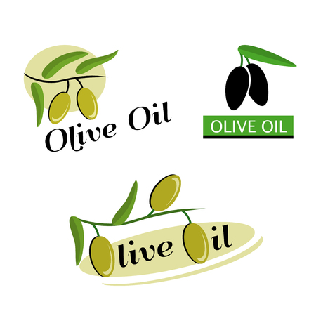 Olive oil icon. Sign branch olives on white background. Logo vector - Branch with green and black olives. Illustration
