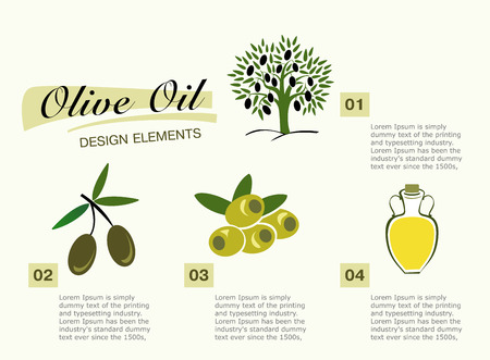 Infographic get olive oil. Pictures for four steps, the olive tree, green and black olives and a jug of oil.