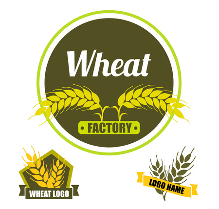 Set logo vector wheat factory. Circle green badge with gold ears on dark background. Flat design. Archivio Fotografico