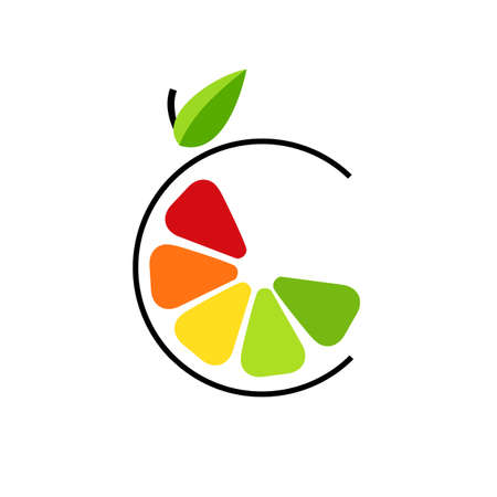 Abstract color slice citrus fruits with circle line. Logo concept