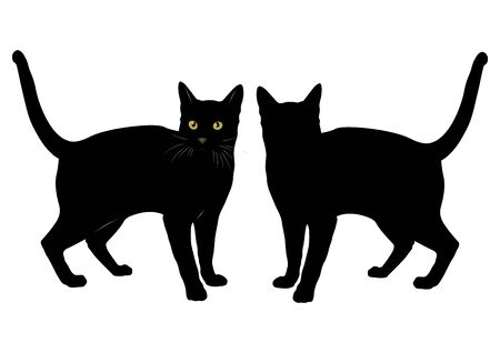 Beautiful black silhouette of a cat on a white background, vector graphics.