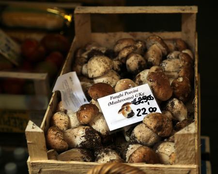 porcini: Porcini Mushrooms