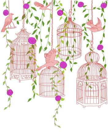 Hand-drawn illustration of a rose garden with birds and ornate cages