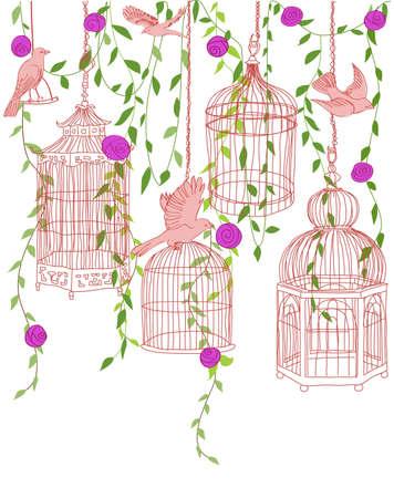 flores fucsia: Dibujado a mano ilustración de un jardín de rosas con los pájaros y jaulas adornadas