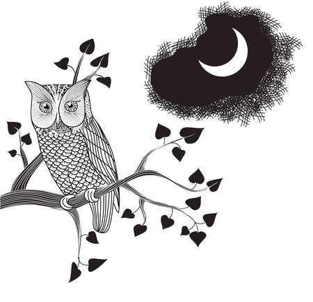 Luz de la luna y el búho posado en una rama de un árbol de dibujo de lápiz,