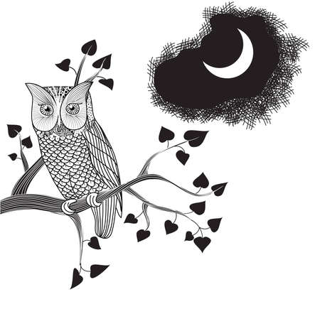 black and white line drawing: Moonlight and Owl perched on a tree branch, pencil drawing