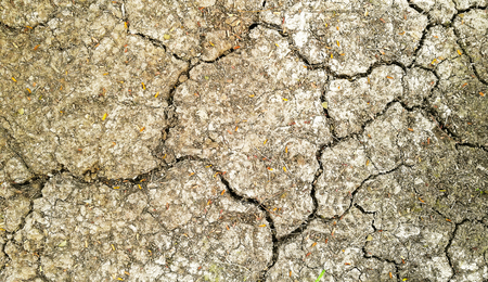 Dry and cracked earth for background Stock Photo