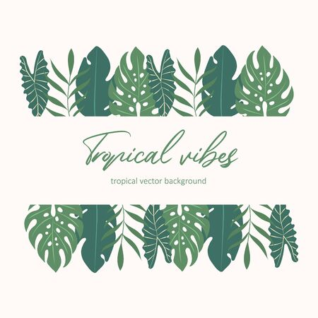 Tropical vector frame. Tropical background
