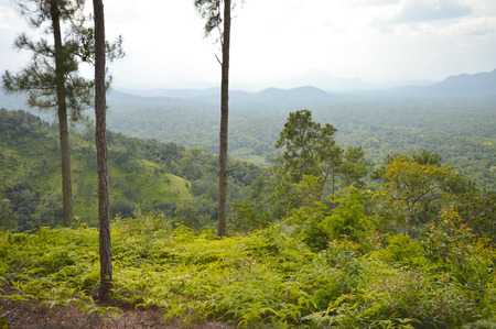 bens: Landscape around Cockscomb Basin Wildlife Sanctuary seen from the top of Bens Bluff trail, Belize Stock Photo