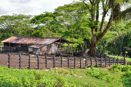 Horse and cow barn near Matagalpa on the way to Pita village, in the northern highlands of Nicaragua Stock Photo