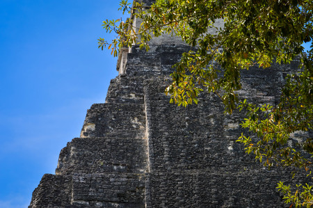 Close up of Temple I of the Maya archaeological site of Tikal in Guatemala. Central America