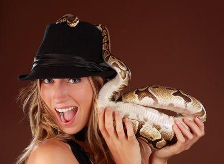 royal python: cute blond woman holding a Royal Python snake
