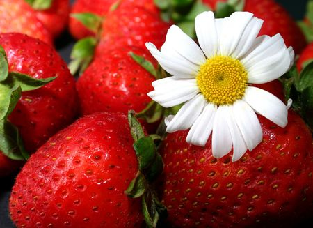 strawberries and daisy