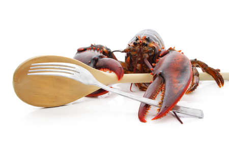 alive lobster holding spoon and fork photo