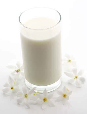 glass of milk and white flower isolated on white
