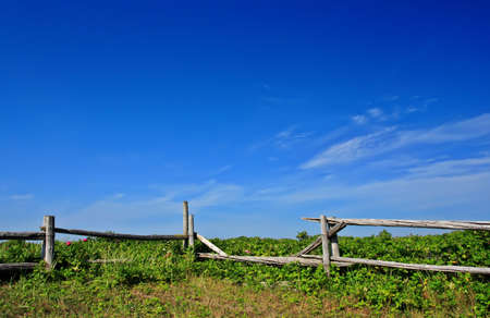 country landscape with fence and blue sky