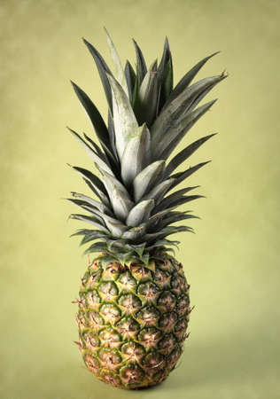 fresh whole ripe pineapple, green background Stock Photo