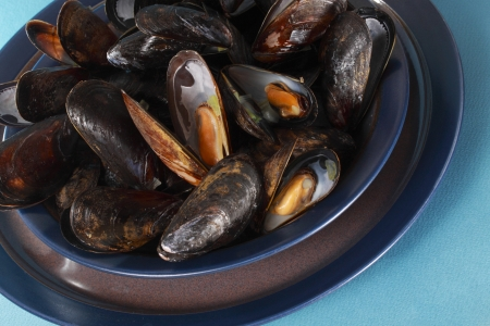 plate of delicious fresh cooked mussels