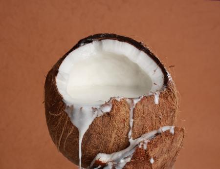 코코 우유 가득 신선한 열린 코코넛 과일 스톡 콘텐츠