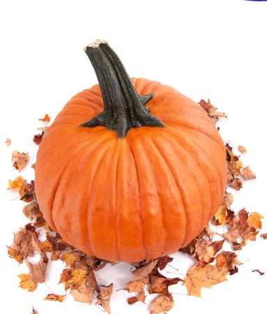 whole fesh Halloween pumpkin and autumn dried leaves