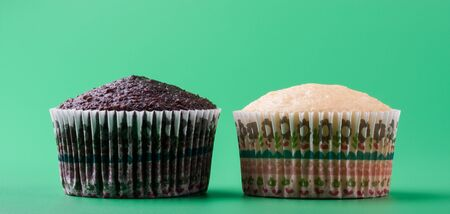 Delicious sweet vanilla and chocolate cupcake, green background
