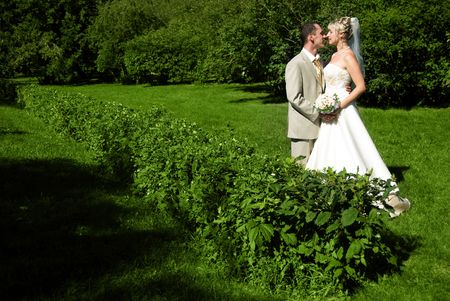 young bride and groom embracing in the park photo
