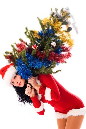 beautiful young brunette woman carrying a Christmas tree isolated against white background photo
