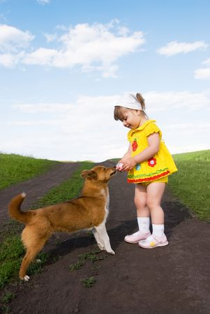 without people: cute little two year old girl playing with a ginger dog outdoor