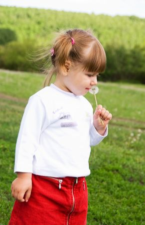 cute smiling two year old girl  with a dandelion on the hill in summer photo