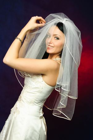 studio portrait of a beautiful young brunette bride holding her veil Stock Photo - 4321605